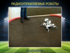Радиоуправляемые роботы - FootballFest - аренда и продажа футбольных аттракционов